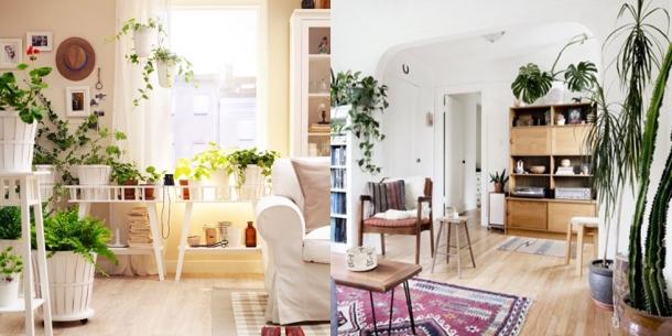 Como Transformar uma Sala (2)